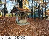 Купить «Старый деревянный колодец», фото № 1545605, снято 31 октября 2008 г. (c) Юрий Брыкайло / Фотобанк Лори