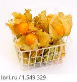 Купить «Физалис съедобный в контейнере», эксклюзивное фото № 1549329, снято 12 марта 2010 г. (c) Юрий Морозов / Фотобанк Лори