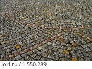 Каменная мостовая. Стоковое фото, фотограф Сергей Слабенко / Фотобанк Лори