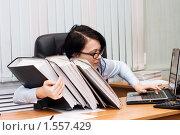 Купить «Девушка в офисе зарылась в кипе бумаг», фото № 1557429, снято 23 декабря 2009 г. (c) Воронин Владимир Сергеевич / Фотобанк Лори