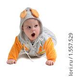 Купить «Ребенок 6 месяцев с открытым ртом», эксклюзивное фото № 1557529, снято 5 января 2010 г. (c) Вячеслав Палес / Фотобанк Лори