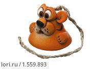 Купить «Колокольчик», фото № 1559893, снято 17 марта 2010 г. (c) Игорь Веснинов / Фотобанк Лори