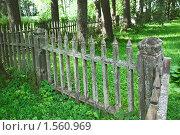 Деревянный забор, парк. Стоковое фото, фотограф Анфимов Леонид / Фотобанк Лори