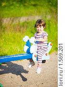 Купить «Маленькая девочка катается на качелях», фото № 1569201, снято 12 июля 2009 г. (c) Ольга Сапегина / Фотобанк Лори