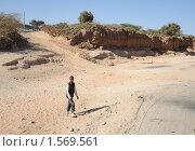 Купить «Высохшее русло реки», фото № 1569561, снято 8 января 2010 г. (c) Free Wind / Фотобанк Лори