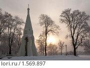 Зимний день (2010 год). Стоковое фото, фотограф Евгения Недопёкина / Фотобанк Лори