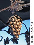 Кованая виноградная гроздь. Стоковое фото, фотограф Сидоров Артем Романович / Фотобанк Лори