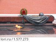 Купить «Вечный огонь у Могилы Неизвестного солдата», фото № 1577273, снято 12 июля 2009 г. (c) Илюхина Наталья / Фотобанк Лори