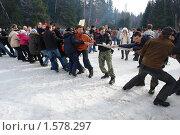 Купить «Перетягивание каната на масленицу», фото № 1578297, снято 9 марта 2008 г. (c) Николай Богоявленский / Фотобанк Лори