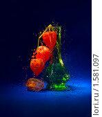 Купить «Грустный осенний натюрморт», фото № 1581097, снято 22 октября 2007 г. (c) Svetlana Mihailova / Фотобанк Лори