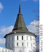 Купить «Москва. Свято-Данилов монастырь», эксклюзивное фото № 1583973, снято 17 марта 2010 г. (c) lana1501 / Фотобанк Лори