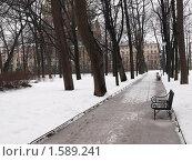 Михайловский сад, Санкт-Петербург (2009 год). Стоковое фото, фотограф Юрий Ческидов / Фотобанк Лори