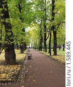 Осень в парке. Стоковое фото, фотограф Юрий Ческидов / Фотобанк Лори