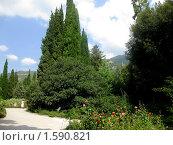 Купить «Спокойствие. Ботанический сад в Ялте», фото № 1590821, снято 18 августа 2009 г. (c) Марина Чиркова / Фотобанк Лори