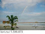 Купить «После дождя», фото № 1590873, снято 2 января 2006 г. (c) Ольга Волкова / Фотобанк Лори