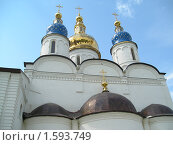 Купола Софийского собора (2007 год). Стоковое фото, фотограф Виктор Простакишин / Фотобанк Лори