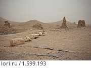 Купить «Древние гробницы недалеко от Пальмиры. Сирия», фото № 1599193, снято 9 марта 2010 г. (c) Irina Kruskop / Фотобанк Лори