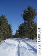 Купить «Зимняя дорога», фото № 1600381, снято 17 марта 2010 г. (c) Александр Шилин / Фотобанк Лори