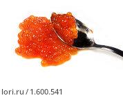 Купить «Ложка с красной  лососевой икрой», фото № 1600541, снято 7 августа 2009 г. (c) ElenArt / Фотобанк Лори
