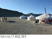 Купить «Традиционные монгольские юрты», фото № 1602361, снято 6 августа 2008 г. (c) Иван Нестеров / Фотобанк Лори