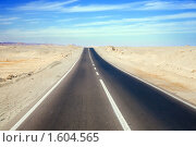 Дорога через пустыню, фото № 1604565, снято 3 января 2010 г. (c) Яков Филимонов / Фотобанк Лори
