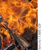 Купить «Пламя», фото № 1605129, снято 4 апреля 2010 г. (c) Константин Кург / Фотобанк Лори
