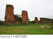 Купить «Руины Кревского замка, Крево, Гродненская область, Беларусь», фото № 1607825, снято 11 июля 2009 г. (c) Марина Шатерова / Фотобанк Лори