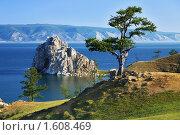 Дерево желаний на мысе Бурхан острова Ольхон на Байкале. Стоковое фото, фотограф Михаил Марковский / Фотобанк Лори