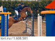 Девушка-жокей  на коне перед преодолением препятствия (2010 год). Редакционное фото, фотограф Василий Шульга / Фотобанк Лори