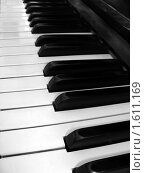 Клавиши пианино. Стоковое фото, фотограф sfsfs / Фотобанк Лори