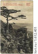 Купить «Дореволюционная открытка. В горах над Алупкой», фото № 1612401, снято 20 октября 2018 г. (c) Staryh Luiba / Фотобанк Лори
