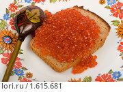 Купить «Икра на куске хлеба», фото № 1615681, снято 7 апреля 2010 г. (c) Елисей Воврженчик / Фотобанк Лори