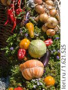Купить «Натюрморт из овощей», фото № 1621525, снято 28 августа 2005 г. (c) Кравецкий Геннадий / Фотобанк Лори
