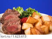 Купить «Жареное мясо и картофель», фото № 1623613, снято 5 мая 2008 г. (c) Коваль Василий / Фотобанк Лори