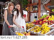 Купить «Две молодые девушки выбирают товары в супермаркете», фото № 1627285, снято 11 апреля 2010 г. (c) Баевский Дмитрий / Фотобанк Лори