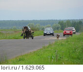 Купить «Лошадь с телегой на дороге среди машин», фото № 1629065, снято 11 июля 2009 г. (c) Ельцов Владимир / Фотобанк Лори