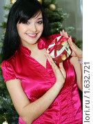 Купить «Красивая девушка держит в руках новогодний подарок», фото № 1632721, снято 16 января 2009 г. (c) Андрей Аркуша / Фотобанк Лори