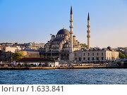 Купить «Вид с залива Золотой рог на Новую мечеть в районе Эминёню в Стамбуле, Турция», фото № 1633841, снято 1 мая 2008 г. (c) Михаил Марковский / Фотобанк Лори