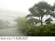 Япония, пейзаж с туманом в национальном парке Хаконе (2007 год). Стоковое фото, фотограф Андрей Солодовников / Фотобанк Лори