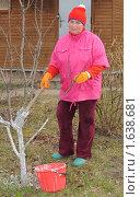 Купить «Женщина белит деревья. Весенние работы на даче», эксклюзивное фото № 1638681, снято 18 апреля 2010 г. (c) Юрий Морозов / Фотобанк Лори