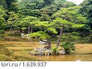 Купить «Япония, сад возле храма Золотой Павильон в городе Киото», фото № 1639937, снято 8 августа 2007 г. (c) Андрей Солодовников / Фотобанк Лори