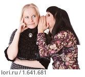 Девушки сплетничают. Стоковое фото, фотограф Светлана Широкова / Фотобанк Лори