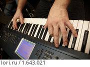 Купить «Игра на синтезаторе», фото № 1643021, снято 26 октября 2009 г. (c) Losevsky Pavel / Фотобанк Лори