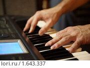 Купить «Руки на клавиатуре синтезатора», фото № 1643337, снято 26 октября 2009 г. (c) Losevsky Pavel / Фотобанк Лори