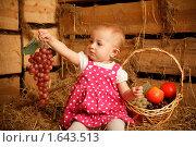Девочка с корзиной фруктов сидит на сене. Стоковое фото, фотограф Losevsky Pavel / Фотобанк Лори