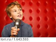 Купить «Портрет мальчика с микрофоном», фото № 1643593, снято 10 ноября 2009 г. (c) Losevsky Pavel / Фотобанк Лори