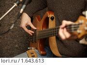 Купить «Гитарист», фото № 1643613, снято 26 октября 2009 г. (c) Losevsky Pavel / Фотобанк Лори