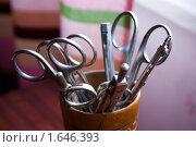 Ножницы, два циркуля и ручка в деревянном стакане. Стоковое фото, фотограф Анна Кондрашова / Фотобанк Лори