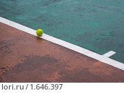 Теннисный мяч на линии. Стоковое фото, фотограф Анна Кондрашова / Фотобанк Лори
