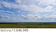 Летнее поле. Стоковое фото, фотограф Земфира Магадеева / Фотобанк Лори